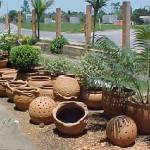 vasos especiais para jardim 5