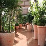 vasos especiais para jardim 7