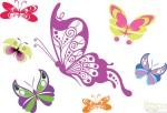 borboletas coloridas 7