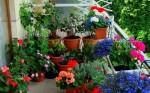 decoracao para jardim de canto 6