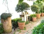 jardim com vasos 2