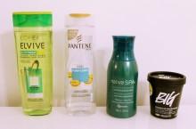 shampoo para  cabelos  que são oleosos