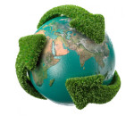 meio ambiente 6
