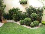 plantas para jardim 1