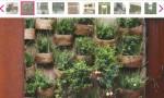 jardim vertical 3