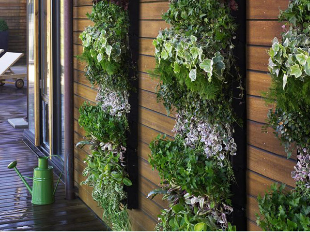 mini jardim vertical : mini jardim vertical:Vertical Herb Garden Idea