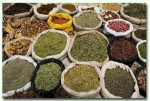 ervas medicinais 1