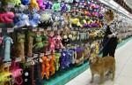 produtos para animais 1