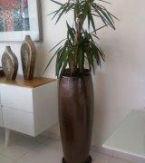 vasos decorativos para sala de estar 8