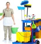 servico de limpeza 2