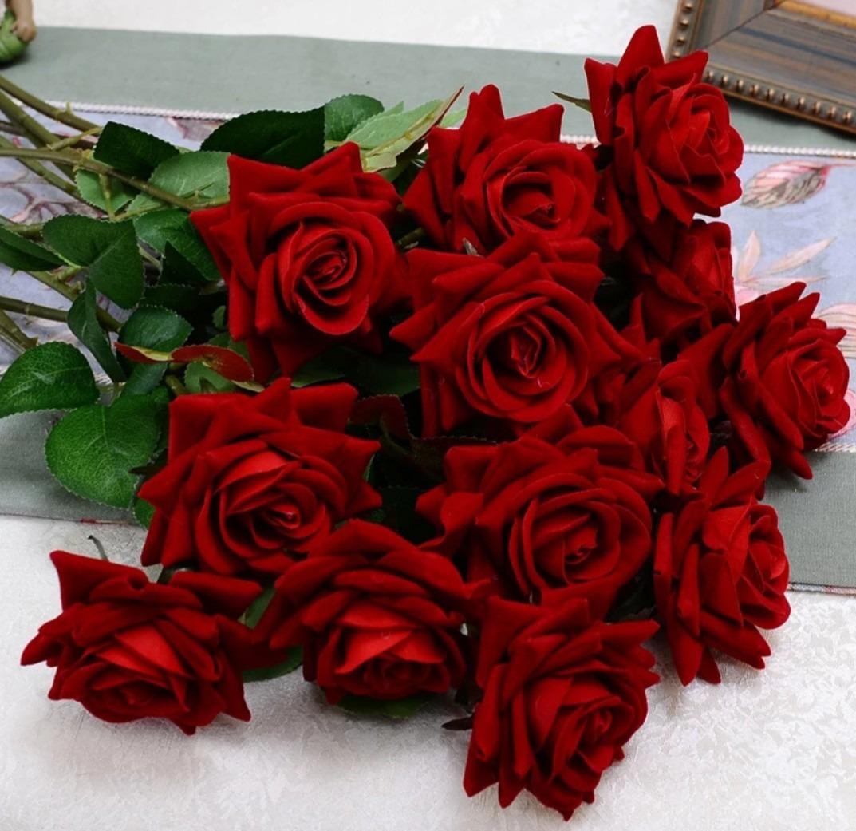rosas da colombia